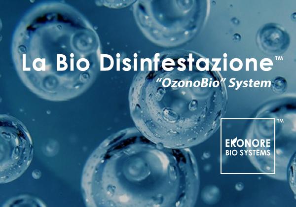 Derattizzazione Bio a Roma