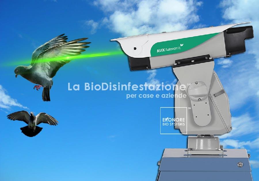Dissuasore Laser allontanamento volatili Roma