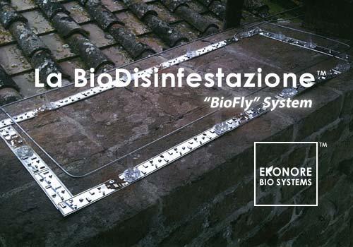 Azienda installazione fili elettrificati per volatili piccioni Roma