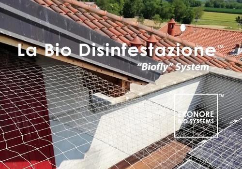 Installazione reti anti intrusione volatili piccioni Roma